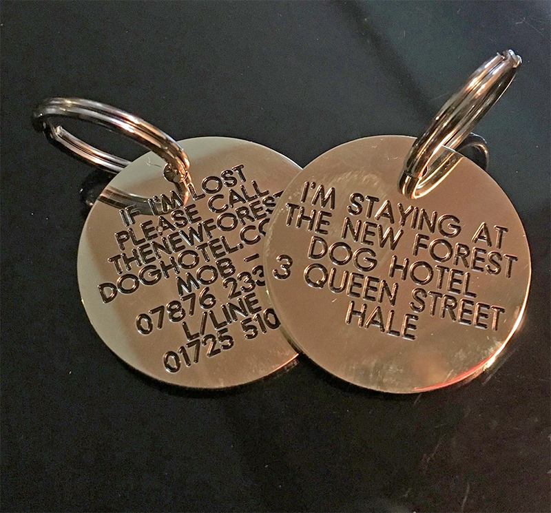 Dog tags to keep dogs safe when they're staying at the New Forest Dog Hotel Hampshire home dog boarding